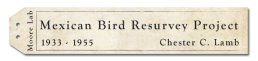 Mexican Bird Resurvey Project Logo